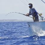 63rdIBT - 63rd International Billfish Tournament