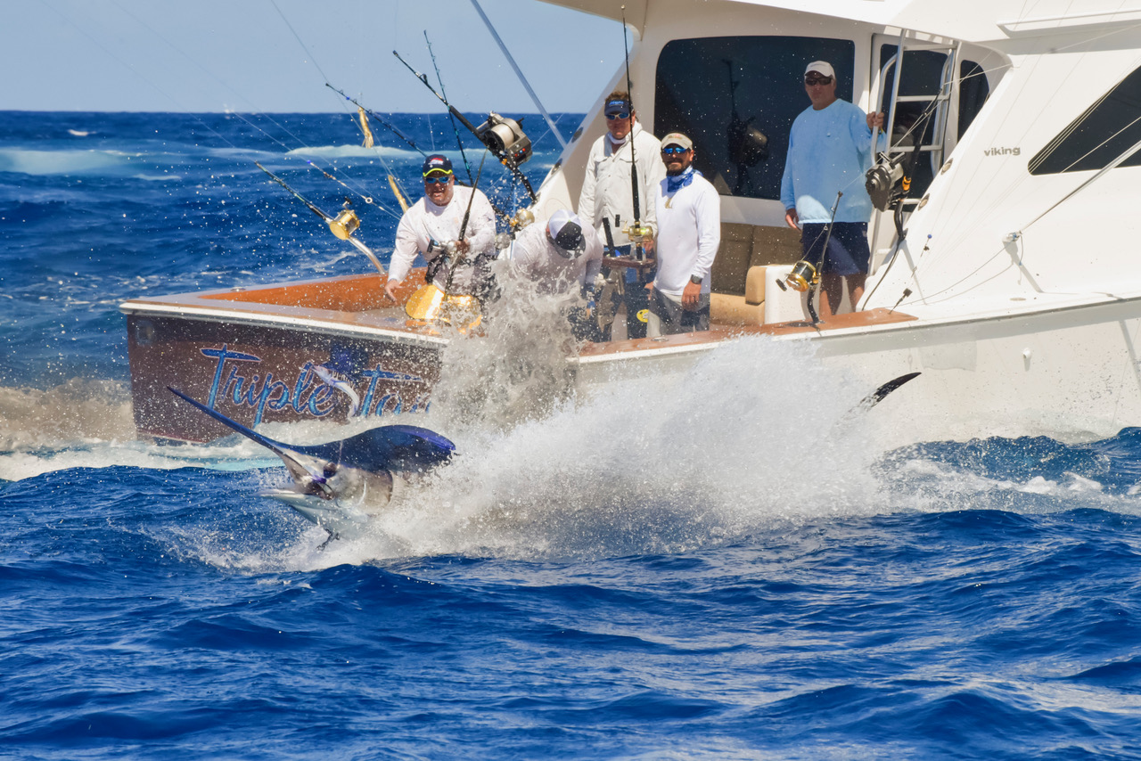 The CNSJ 63rdIBT, 63rd International Billfish Tournament, runs from September 12 - 18, 2016. Fishng action on Wednesday, first day of tournament competition.